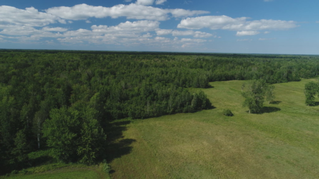 Overview of Vacant Land- 0 Shaffer Rd, Midland