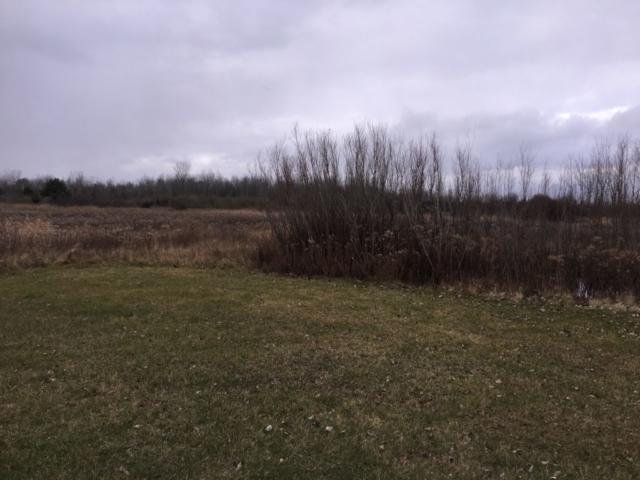 Yard View- 4346 Curtis Rd, Coleman